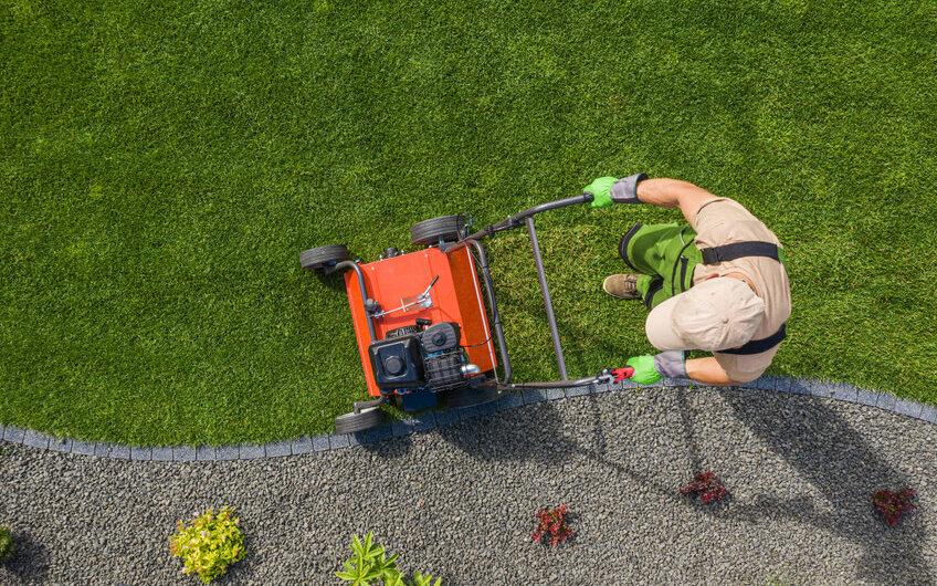 Mit welchen durchschnittlichen Gärtner Kosten kann man rechnen?